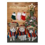 Funny Cats/Kitties Feliz Navidad Post Cards