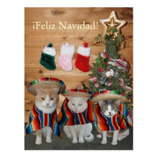 Funny Cats/Kitties Feliz Navidad Postcard