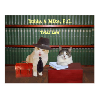 Funny Cats of Counsel Postcard