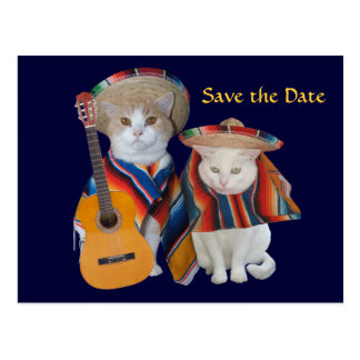 Funny Cats South of the Border Wedding Save the Da Postcard