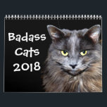 """Funny Cats with Catitude Calendar<br><div class=""""desc"""">All the favorite &quot;badass&quot; cat pictures in one calendar to make you smile every month of the year.</div>"""