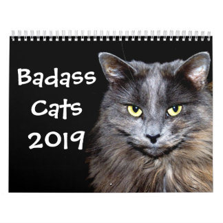 Funny Cats with Catitude Calendar