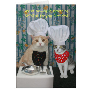 Funny cat birthday cards greeting photo cards zazzle funny chef cats birthday card bookmarktalkfo Gallery