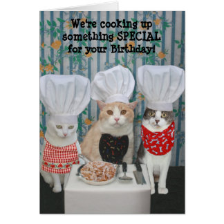 Funny Chef Cats Birthday Greeting Card