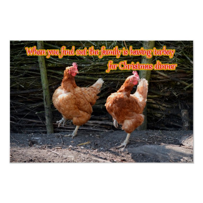 Funny Chicken And Rooster Memes With Funny Images Poster Zazzle Com Internet archive html5 uploader 1.6.4. funny chicken and rooster memes with funny images poster zazzle com