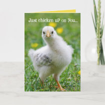 Funny Chicken Checkin' Up On You Card