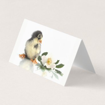 Professional Business funny chicken · Folded Business Cards