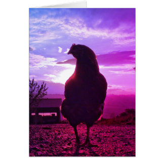 Funny Chicken in backlight Card