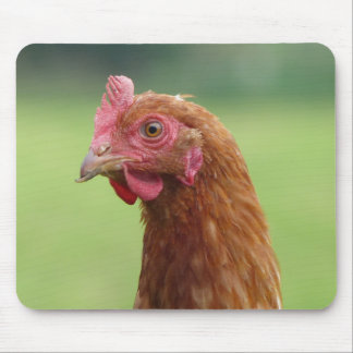 Funny Chicken Portrait Mouse Pad