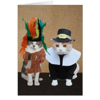 Funny Chief and Pilgrim Cat Lover Thanksgiving Card