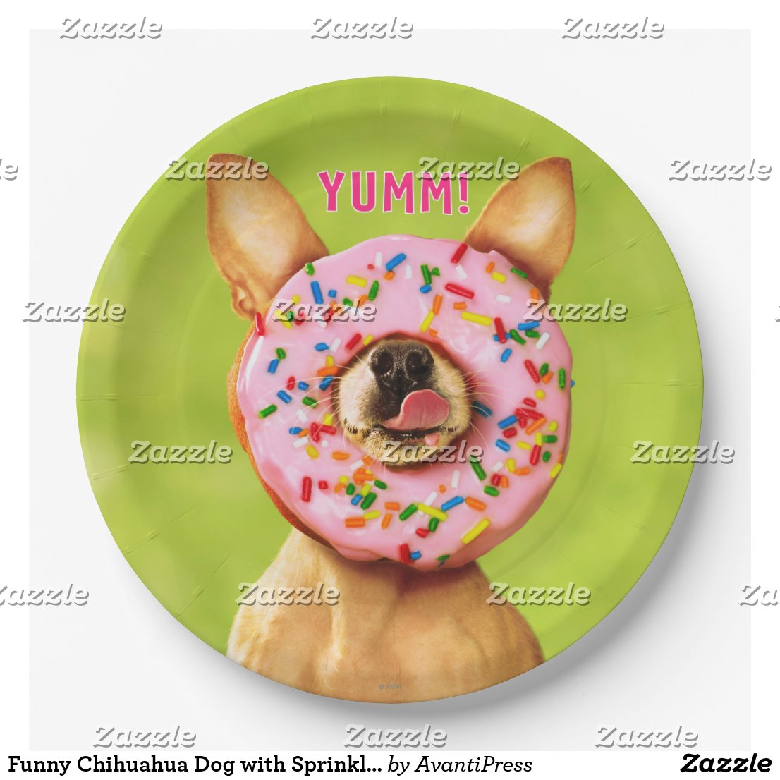 Funny Chihuahua Dog with Sprinkle Donut on Nose