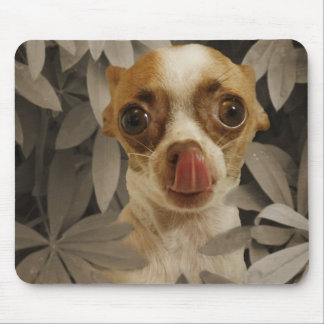 Funny Chihuahua Puppy (Cream/Brown) Tongue Poke Mouse Pad