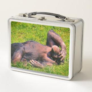 Funny Chimpanzee Animal Metal Lunch Box