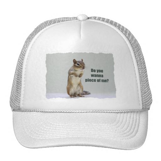 Funny Chipmunk Picture Hats