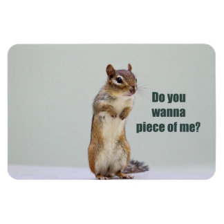 Funny Chipmunk Picture Magnet