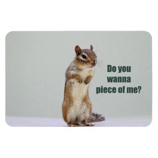 Funny Chipmunk Picture Rectangular Photo Magnet