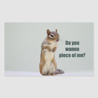 Funny Chipmunk Picture Rectangle Sticker