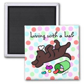 Funny Chocolate Labrador Cartoon Polka Dot 2 Inch Square Magnet
