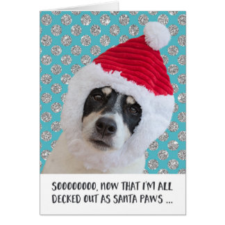 Funny Christmas Card - Dog Santa Paws Wondering