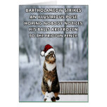 Funny Christmas cat Card