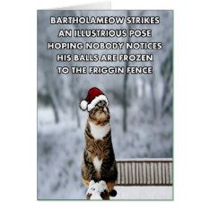 Funny Christmas cat Card at Zazzle