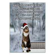 Funny Christmas cat Greeting Card