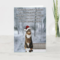 Funny Christmas cat Holiday Card