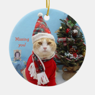 "Funny Christmas Cat ""Missing You!"" Ceramic Ornament"