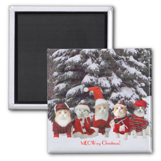 Funny Christmas Cats Refrigerator Magnets