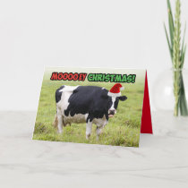 Funny Christmas Cow- Moooey Christmas Card
