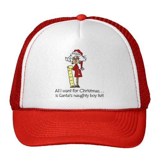 Funny Christmas Gift Mesh Hats