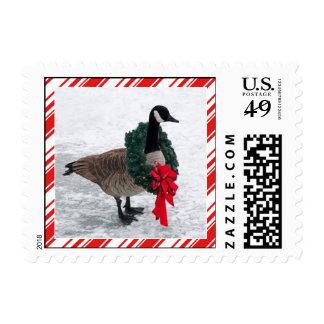 Funny Christmas Goose Stamp