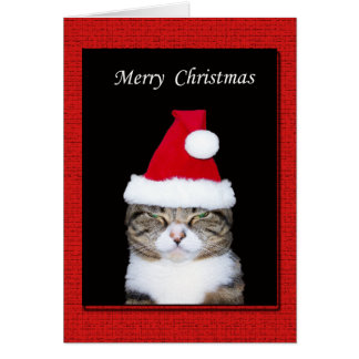 Funny Christmas Greeting Card, Cat with Santa hat Card