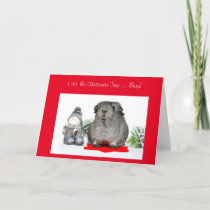Funny Christmas Guinea Pig ate the Tree customized Holiday Card