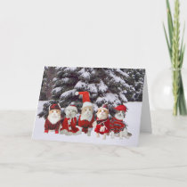Funny Christmas Kitty Cats Holiday Card