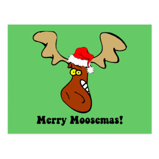 Funny Christmas moose Post Cards