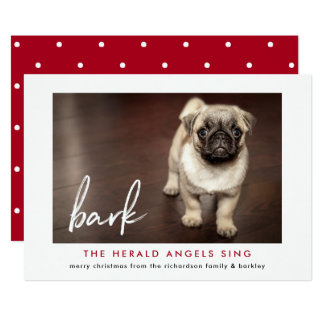 Funny Christmas Photo Card from the Dog | Red