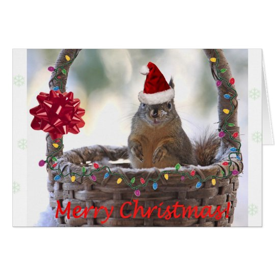 Customize Christmas Cards