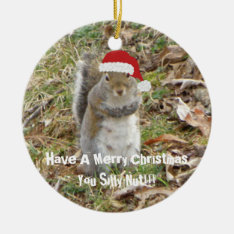 Funny Christmas Squirrel Ornament at Zazzle