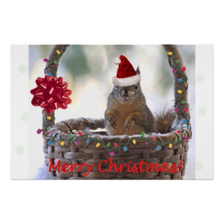 Funny Christmas Squirrel Poster