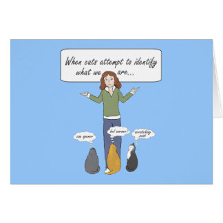 Funny Clueless Kitties Note Card