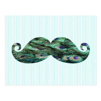 Funny  Colorful Peacock Feathers Mustache Postcard