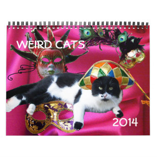 FUNNY COMIC STRIPS FROM WEIRD TALKING CATS 2014 WALL CALENDARS