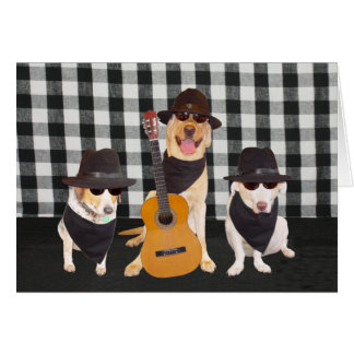 Funny Cool Dogs Greeting Cards