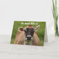 Funny Cow Birthday Card