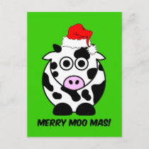 Funny cow Christmas Holiday Postcard