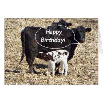 Funny Cow Happy Birthday Card