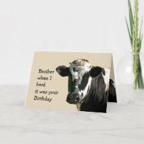 Funny Cow Humor Brother Birthday  Laughs Card