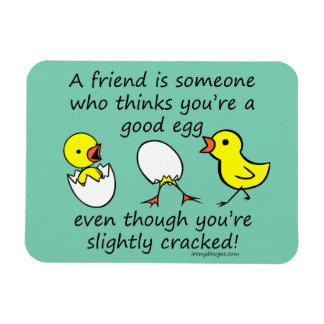 Funny Cracked Best Friend Magnet