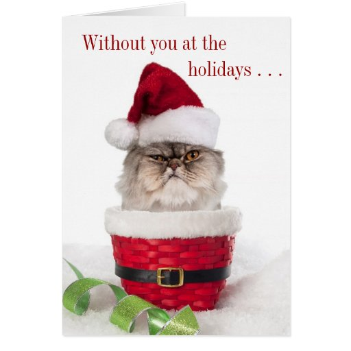 funny cranky cat christmas cards zazzle